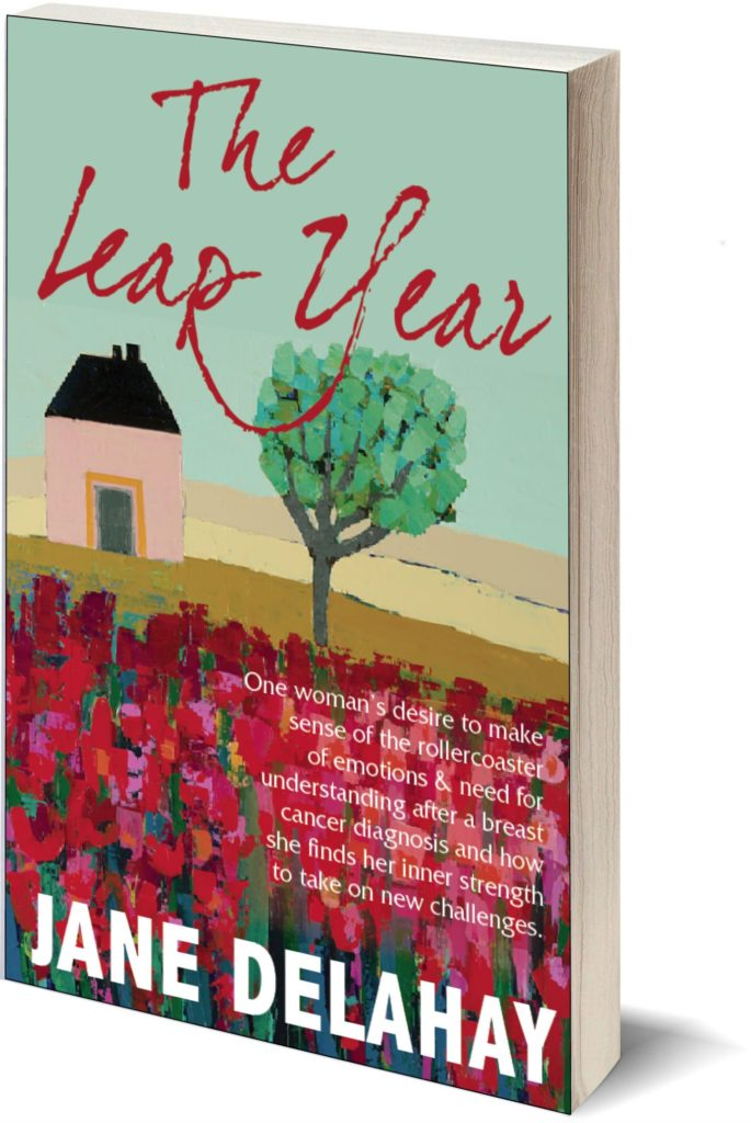 The_Leap_Year_by_Jane_Delahay_Author_ebook_cover-ii