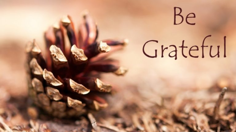 When Gratitude Becomes Your Default Setting, Life Changes