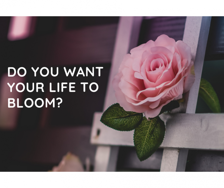 Do you want your life to bloom?